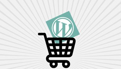 premium-WordPress